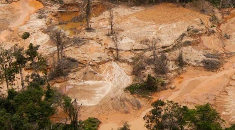 No En Nuestro Nombre: Resistiendo al Arco Minero del Orinoco